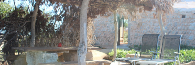 Rural housing in Mallorca